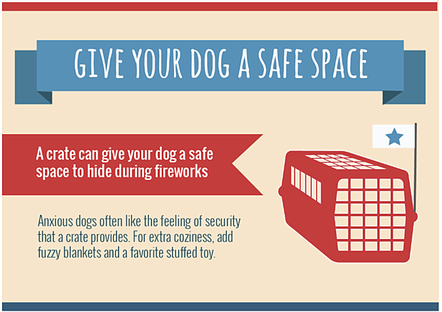 Pet_4th_-_Safe_Space